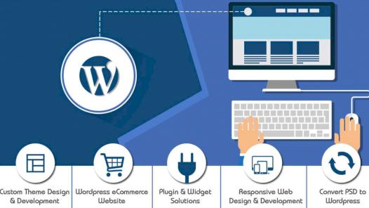 Wordpress ile beraber tema ve eklentiler kurabilirim.