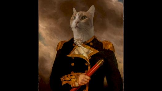 Evcil hayvanınıza özel portre