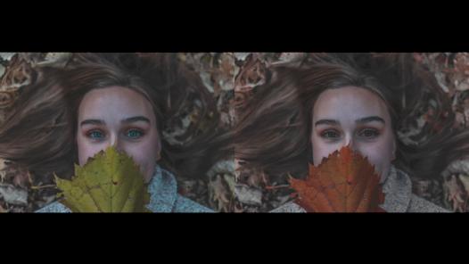 Fotoğraflarınızdaki renkleri istediğiniz gibi değiştirebilirim