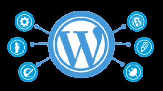 Wordpress temelli yarı profesyonel web siteleri ve düzenli blog içerikleri oluşturabilirim