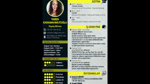 Kişiye özel CV tasarımı