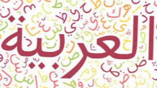Arapça Çeviri ve Özel Ders