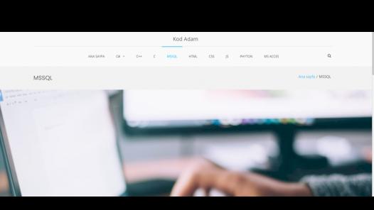 Wordpress ile web sitesi yapımı