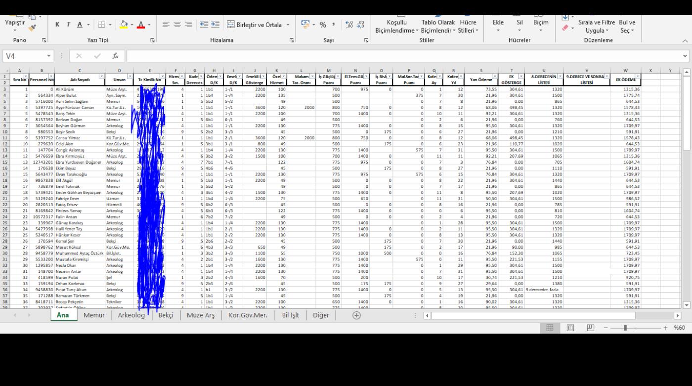 Veri Girişi, Analizi ve Raporlama
